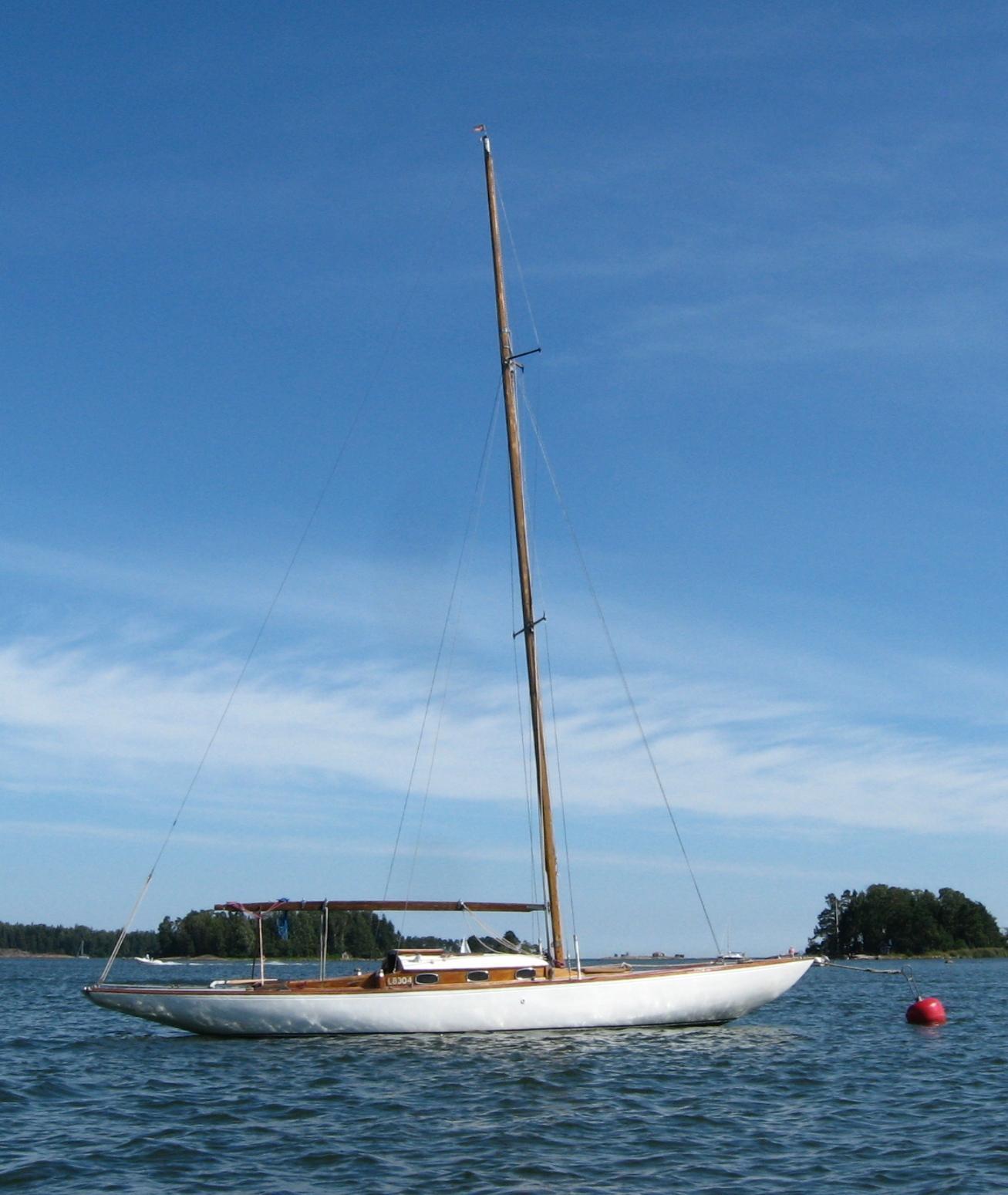 Viking Blåtunga L-4